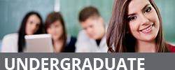 mega-academics-undergraduate